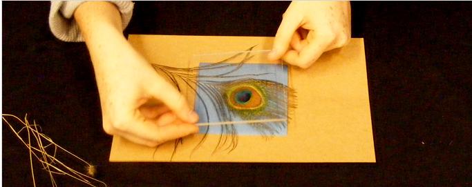 Sunprints » How it works