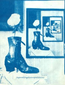 sunprint image of a boot and flower reflection